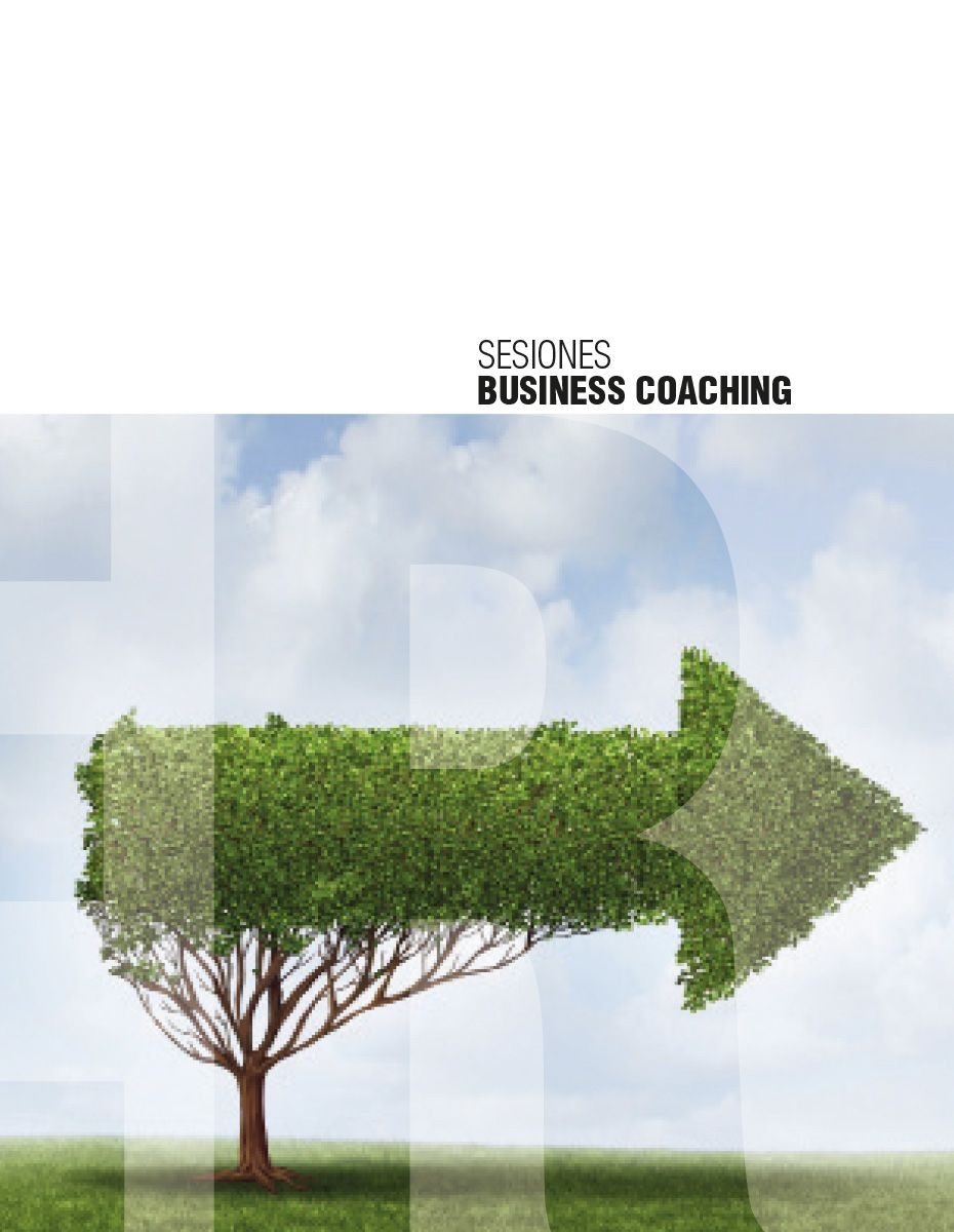 SESIONES-BUSINESS-COACHING